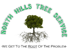 North Hills Tree Service